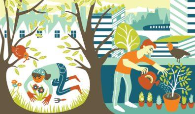 Urban Suburban Gardening by Hannah Lewis