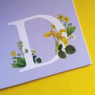 Betty Magazine D by Fiammetta Dogi