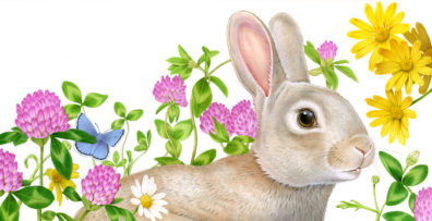 Bunny by Fiammetta Dogi