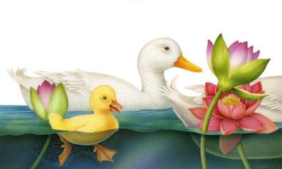 Ducks by Fiammetta Dogi