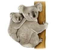 Koala by Fiammetta Dogi