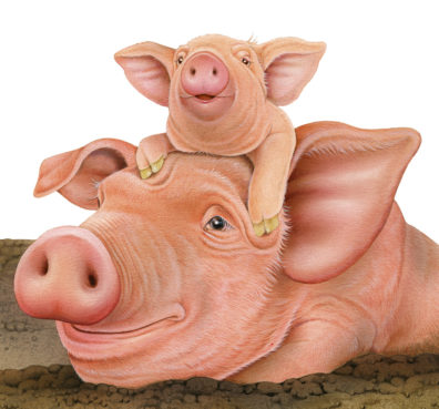 Pigs by Fiammetta Dogi