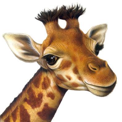 Giraffe by Fiammetta Dogi