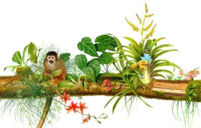 Wildlife by Fiammetta Dogi