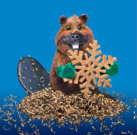 Snowflake Beaver by Marcel Laverdet - Rive Gauche Studio
