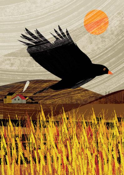 Blackbird by Lee Ford