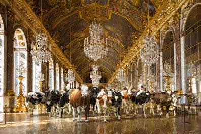 Versailles by Rive Gauche Studio - Marcel Laverdet