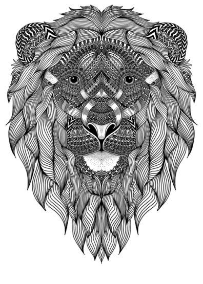Flowing Lion by Joan Tarrago