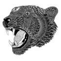 Leopard by Joan Tarrago