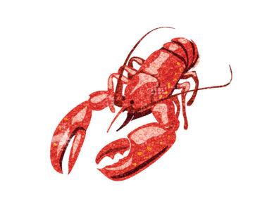 Lobster by Jon Rogers