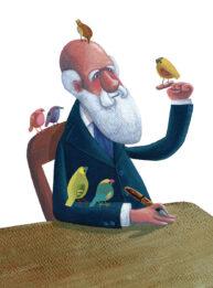 Darwin by Mandy Millie Flockton