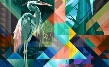 Heron by Garth Glazier