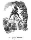 A Quick Descent by Bill Sanderson