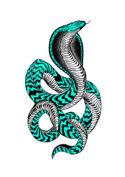 Cobra by Joan Tarrago