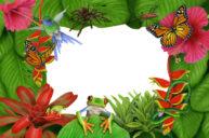 Canopy Frame by Fiammetta Dogi
