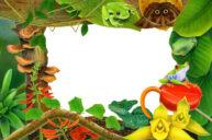 Rainforest by Fiammetta Dogi