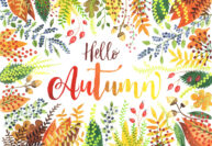 Hello Autumn by Jennie Maizels