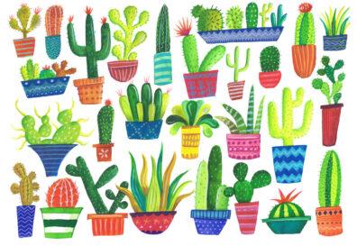 Cactus by Jennie Maizels