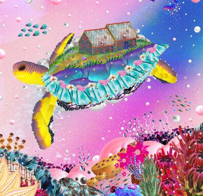 Turtle by Iris de Luz